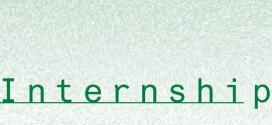 What is Internship Program