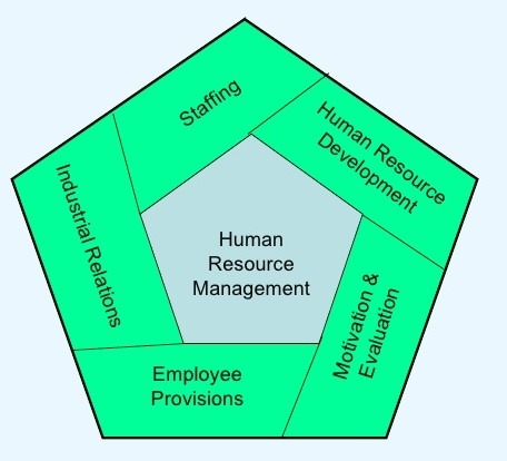 functions of human resources in organisations Some of the major functions of human resource management are as follows: human resource management (hrm) is a very wide function in an organization it focuses on staffing function (human resource planning, recruitment, selection, and placement of people), development function (training and .